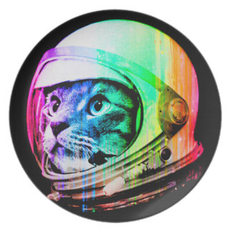 colorful cats - Cat astronaut - space cat Plate