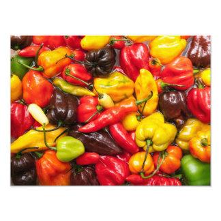 Colorful chili photo art