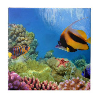 Colorful Coral & Tropical Fish Ceramic Tile