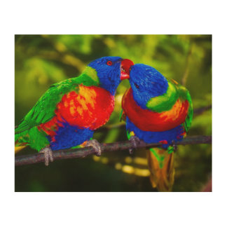 Colorful Couple of Parrots Wood Print