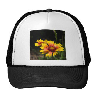 Colorful Daisys Cap