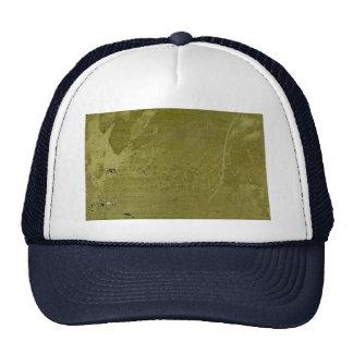 Colorful Dutch Leaf: IV Trucker Hat