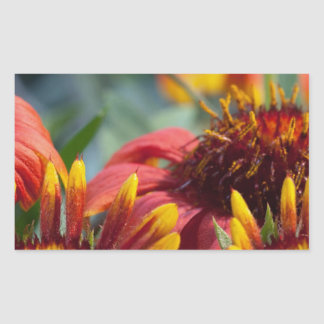 Colorful Exotic Flower Show : Greetings Blessings Rectangular Sticker