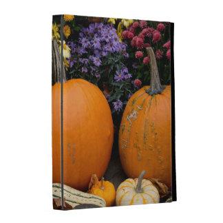 Colorful fall decorative pumpkin display iPad folio case