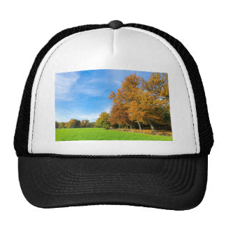 Colorful fall landscape with trees sky and meadow cap