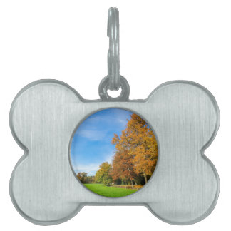 Colorful fall landscape with trees sky and meadow pet tag
