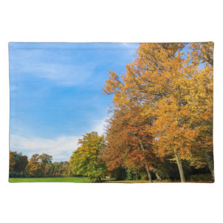 Colorful fall landscape with trees sky and meadow placemat