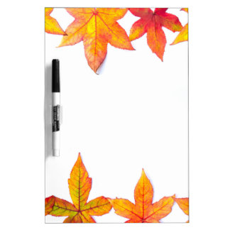 Colorful fall leaves framework on white dry erase board