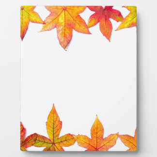 Colorful fall leaves framework on white plaque
