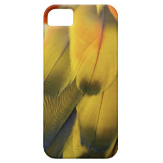 Colorful Feathers iPhone Case iPhone 5 Cases