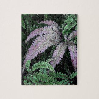 Colorful Ferns Puzzle