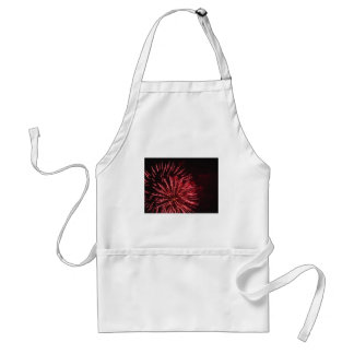 Colorful fireworks of various colors in the night standard apron