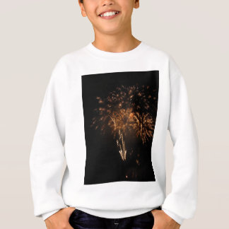 Colorful fireworks of various colors in the night sweatshirt