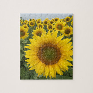 Colorful Floral Yellow Sunflowers Harvest Jigsaw Puzzle