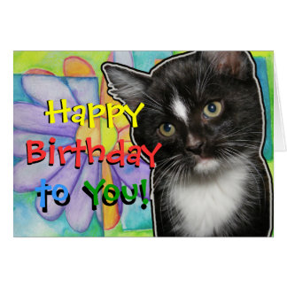 Colorful Flower and Kitten Birthday Card