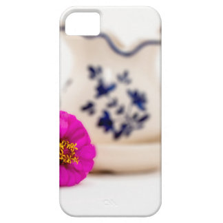Colorful focus iPhone 5 cases