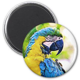 Colorful Friend Magnet