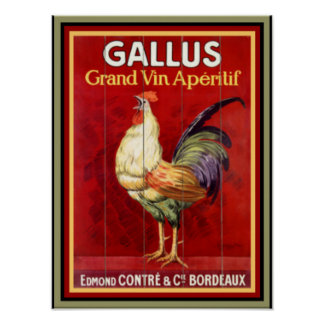 Colorful Gallus  Vintage Ad Poster 12 x 16