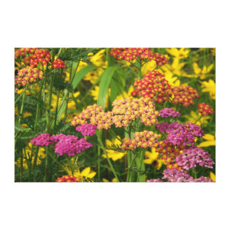 Colorful Garden Flowers Wrapped Canvas Print