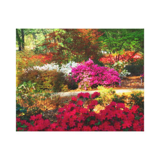 Colorful garden Wrapped Canvas Stretched Canvas Prints