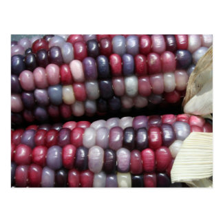 Colorful Glass Gem Corn. Postcard