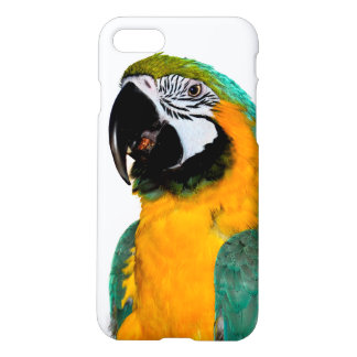 colorful gold teal macaw parrot bird portrait iPhone 8/7 case