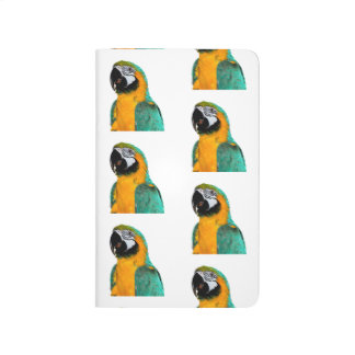 colorful gold teal macaw parrot bird portrait journal