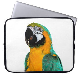 colorful gold teal macaw parrot bird portrait laptop sleeves