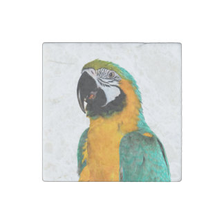 colorful gold teal macaw parrot bird portrait stone magnet