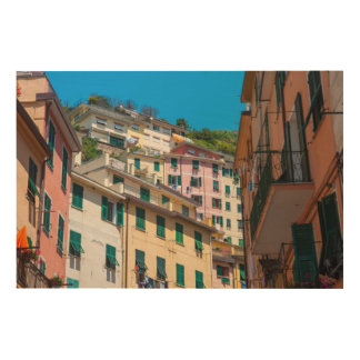 Colorful Homes in Cinque Terre Italy Wood Print