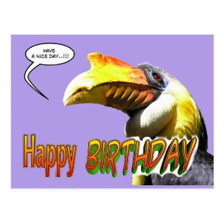 Colorful Hornbill Birthday Postcard