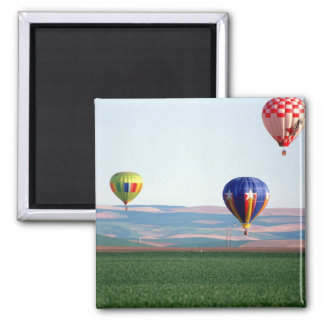Colorful hot air balloons float over wheat square magnet