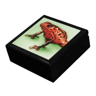 Colorful illustrated tile gift box - Frog