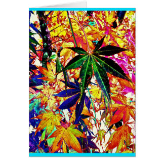Colorful Japanese Maple Greeting Card