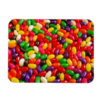 Colorful jellybean candy magnet