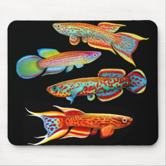 Colorful Killifish Mousepad