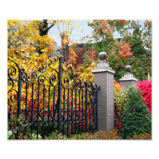 Colorful Leaf Gate in Louisville Photo Art