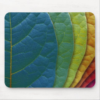 Colorful Leaf Rainbow Pattern Mouse Pad