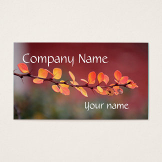 Colorful leaves business card