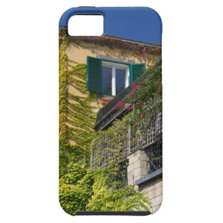 Colorful leaves on house tough iPhone 5 case