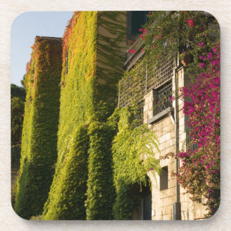 Colorful leaves on house walls coaster