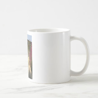 Colorful leaves on house walls coffee mug