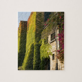 Colorful leaves on house walls jigsaw puzzle