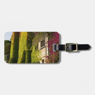 Colorful leaves on house walls luggage tag