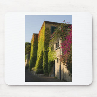 Colorful leaves on house walls mouse pad