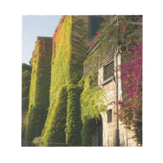 Colorful leaves on house walls notepad