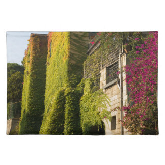 Colorful leaves on house walls placemat