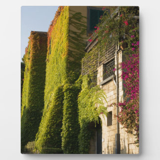 Colorful leaves on house walls plaque