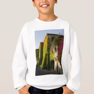 Colorful leaves on house walls sweatshirt