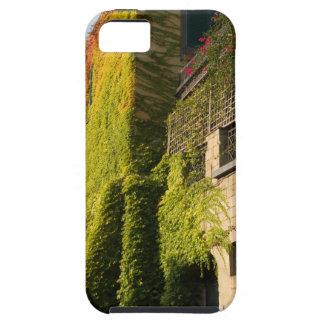 Colorful leaves on house walls tough iPhone 5 case